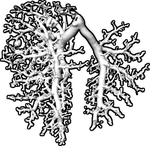 Lunge_Sockel_freigestellt
